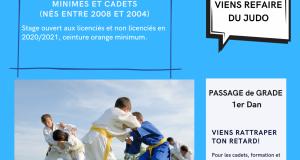 Stage judo été minimes - cadets